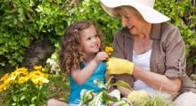 Summer Gardening Checklist