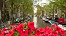 5 Day Trip Plan to the Netherlands