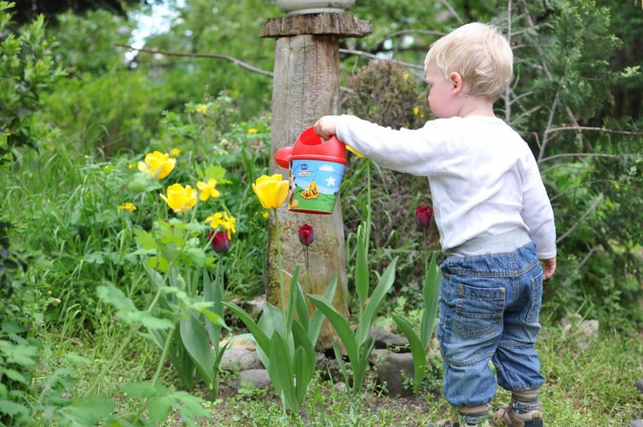 Gardening with Children Checklist